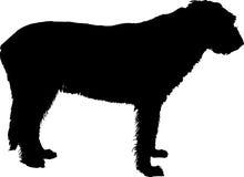 Siluetta di vettore del wolfhound irlandese Fotografia Stock Libera da Diritti