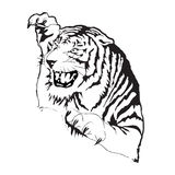 Siluetta di vettore della tigre Immagini Stock