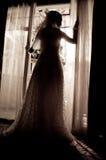 Siluetta diritta Wedding Fotografie Stock Libere da Diritti