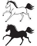 Cavallo galoppante Fotografia Stock