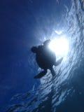 Siluetta Hawai della tartaruga di Maui Fotografia Stock Libera da Diritti