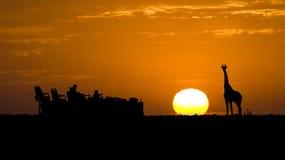 Siluetta idillica di safari Fotografie Stock Libere da Diritti