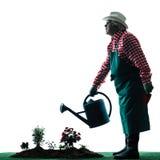 Siluetta isolata di giardinaggio dell'uomo del giardiniere fotografia stock libera da diritti