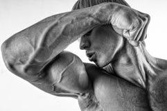 Siluetta maschio Fotografie Stock Libere da Diritti
