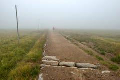 Siluetta in nebbia Fotografie Stock Libere da Diritti