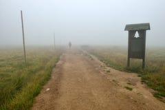 Siluetta in nebbia Immagini Stock Libere da Diritti