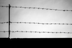 Siluetta nera del filo spinato sul fondo scuro del cielo Fotografie Stock Libere da Diritti