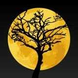 Siluetta nera dell'albero sulla luna gialla Fotografia Stock Libera da Diritti