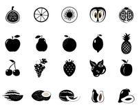 Siluetta nera dell'uva Illustrazione di vettore Fotografie Stock Libere da Diritti