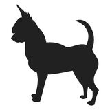 Siluetta nera della chihuahua Fotografie Stock Libere da Diritti