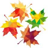 Siluetta poligonale del triangolo delle foglie di acero Immagini Stock