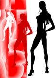 Siluetta sensuale di bellezza Immagini Stock Libere da Diritti