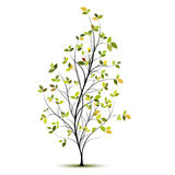 Siluetta verde dell'albero di vettore con i fogli Immagine Stock