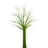 Siluetta verde dell'albero su fondo bianco Immagini Stock