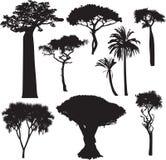 Siluette africane dell'albero Fotografia Stock