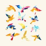 Siluette artistiche dell'uccello di volo dell'acquerello riempite di strutture mabling, colori luminosi fluidi, isolati su fondo  illustrazione vettoriale