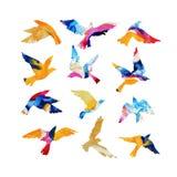 Siluette artistiche dell'uccello di volo dell'acquerello riempite di strutture mabling, colori luminosi fluidi, isolati su fondo  illustrazione di stock
