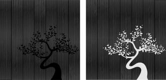 Siluette in bianco e nero dell'albero Immagine Stock Libera da Diritti