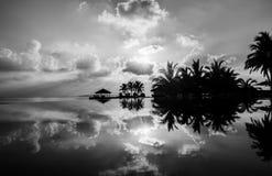 Siluette in bianco e nero delle palme sulla spiaggia tropicale in Maldive fotografie stock libere da diritti