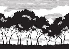 Siluette degli alberi Fotografia Stock