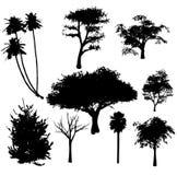 Siluette degli alberi di vettore Fotografia Stock