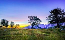 Siluette degli alberi e una tenda sotto un cielo notturno all'ora crepuscolare Alpi, parco nazionale di Triglav, Slovenia Fotografia Stock Libera da Diritti