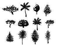 Siluette degli alberi forestali messe Fotografia Stock