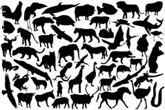 Siluette degli animali Immagine Stock Libera da Diritti