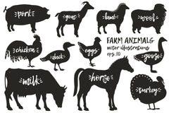 Siluette degli animali da allevamento di vettore Illustrazioni d'annata Animali disegnati a mano Fotografia Stock Libera da Diritti