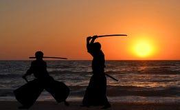 Siluette degli uomini che praticano gli aikidi royalty illustrazione gratis