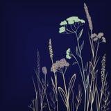 Siluette dei fiori e dell'erba illustrazione vettoriale