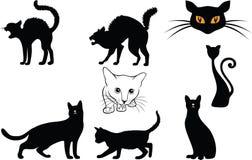Siluette dei gatti Immagini Stock Libere da Diritti