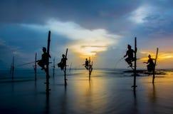 Siluette dei pescatori dello Sri Lanka tradizionali del trampolo Immagini Stock