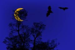 Siluette dei pipistrelli e bello ramo per uso del fondo sotto Fotografia Stock