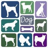 Siluette del cane Immagini Stock Libere da Diritti