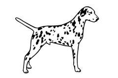 Siluette del cane Fotografia Stock Libera da Diritti