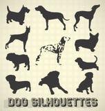 Siluette del cane di animale domestico Fotografie Stock