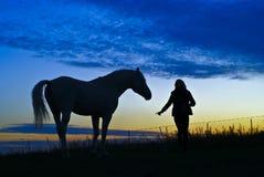 Siluette del cavallo e della donna su un fondo di cielo blu nella sera Fotografia Stock