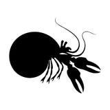 Siluette del crabr dell'eremita in bianco e nero Fotografia Stock