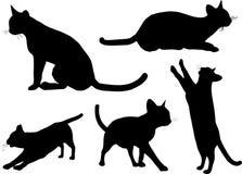 Siluette del gatto Fotografie Stock Libere da Diritti