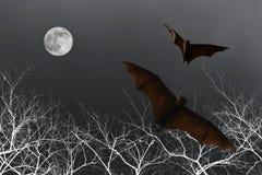Siluette del pipistrello con la luna piena - festival di Halloween Fotografie Stock Libere da Diritti