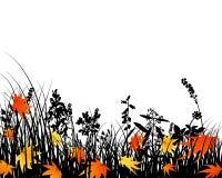 siluette del prato di autunno Fotografia Stock