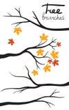 Siluette del ramo di albero Immagini Stock Libere da Diritti