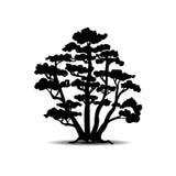 Siluette dell'albero Illustrazione di vettore Fotografia Stock