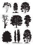 Siluette dell'albero (vettore) Fotografie Stock