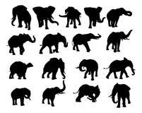 Siluette dell'elefante messe illustrazione di stock