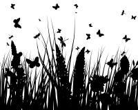 Siluette dell'erba Fotografie Stock Libere da Diritti