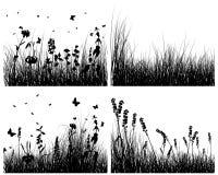 Siluette dell'erba impostate Fotografia Stock