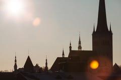Siluette delle guglie e delle torri Tallinn vecchia Immagine Stock Libera da Diritti