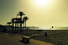 Siluette delle palme sulla spiaggia al tramonto Paesaggio uguagliante fantastico in Spagna fotografia stock libera da diritti